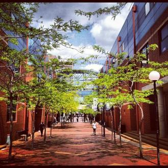 Pretty image of campus